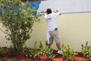 exterior painters royal palm beach fl
